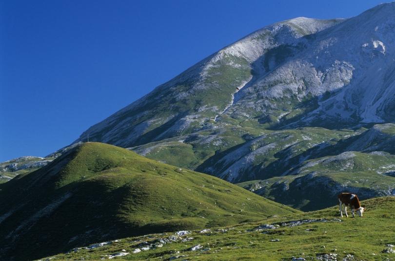 Reisebericht Südtirol