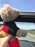Philipp, mein Reise-Maskottchen, schaut nach dem Weg...